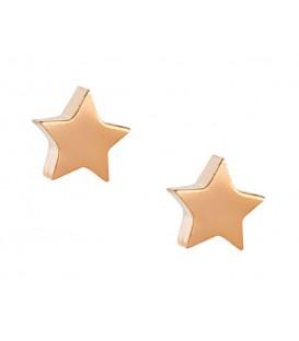 Σκουλαρίκια αστεράκι ροζ  χρυσά